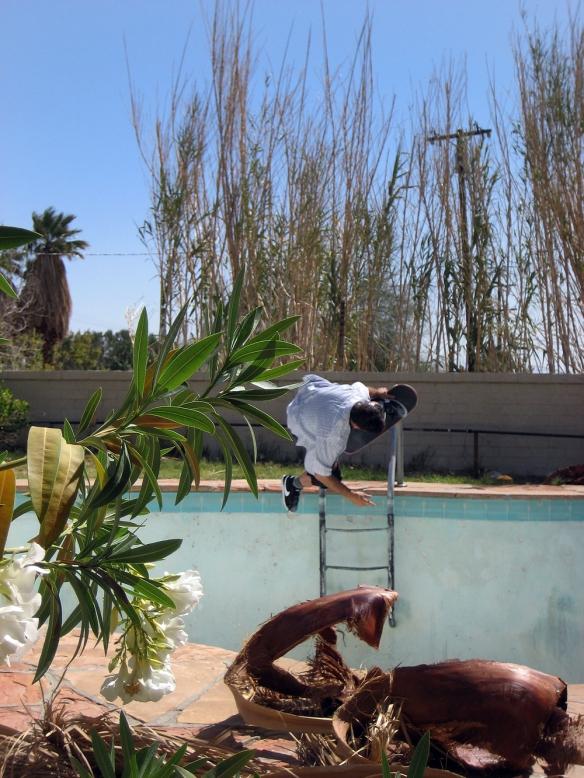 Lance Mountain-fastplant ladder