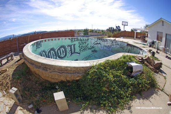 Art's Pool